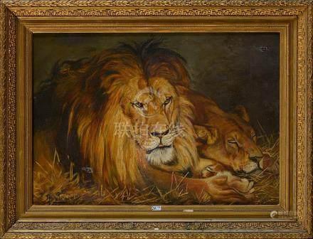 """Huile sur toile """"Lion et lionne"""". Signature non déchiffrée e"""