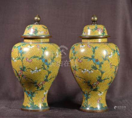 Pair Chinese Cloisonne Vases with Cover