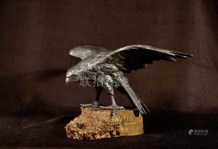 Japanese Meiji Silvered Bronze Hawk on Burlwood Stand -