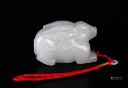 chinese Jade rabbit