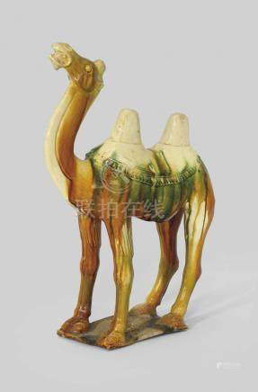 A SANCAI-GLAZED POTTERY CAMEL