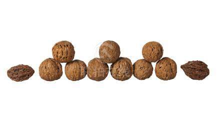Nine Chinese carved walnuts and two carved peach stones, early 20th century, each carved with