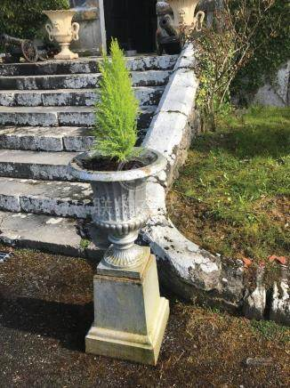 PAIR OF REGENCY CAST IRON URNS AND BASES