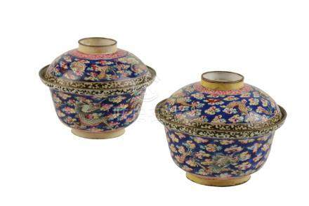 PAIR OF BLUE-GROUND CANTON ENAMEL RICE BOWLS, QING DYNASTY, 19TH CENTURY