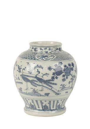 BLUE AND WHITE 'PEACOCK' JAR, MING DYNASTY
