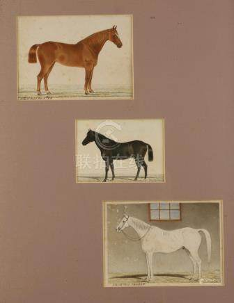 SET OF THREE WATERCOLOURS OF HORSES, INDIA, 19TH CENTURY