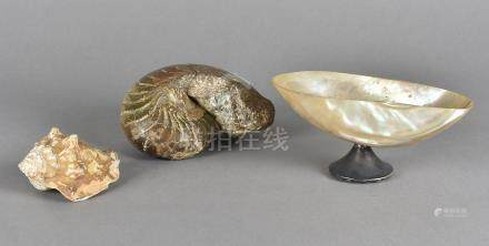 An Edward VII silver and mother of pearl shell bowl, dated London 1907, 16 cm x 7 cm high together