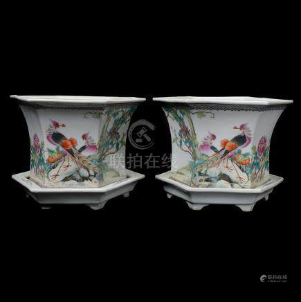 Pair of Famille Rose Planters with Under Trays, Republic