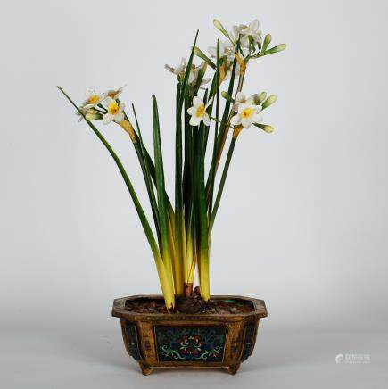 CHINESE CLOISONNE NARCISSUS FLOWER POT