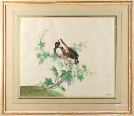 A 19th century Chinese painting on paper depicting Two Birds eating Grapes on a Vine, 3-character