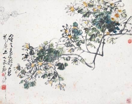 王个簃 - 野金錢菊(藏印:楊子本章) (原裝舊裱)
