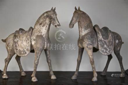 Paire de chevaux à selle amovible Terre cuite grise à engobeChine dynastie Tang, 618-907 Apr