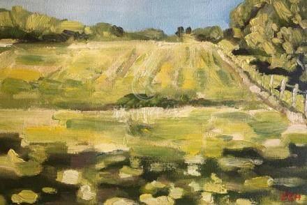 Impressionistic Paintings Oil Paintings Original Wall