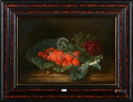 HUYGENS François Joseph (1820 1908)