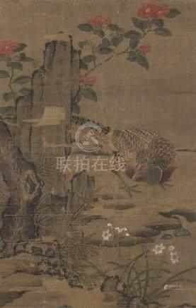 佚名(明) 锦鸡茶花 立轴 设色绢本