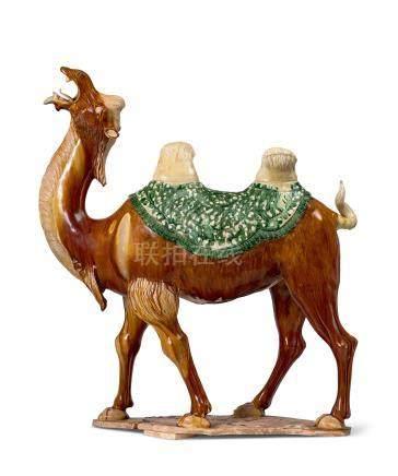 三彩駱駝立像(唐)