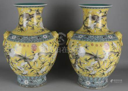 Two large old Chinese porcelain ornamental vases.