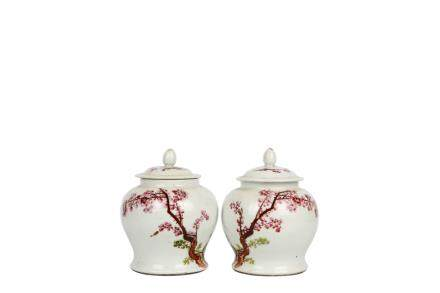 Pair of Chinese Famille-Rose Porcelain Jar
