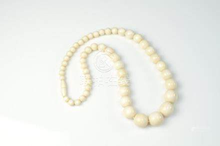 GRADUATED IVORY BEADED NECKLACE