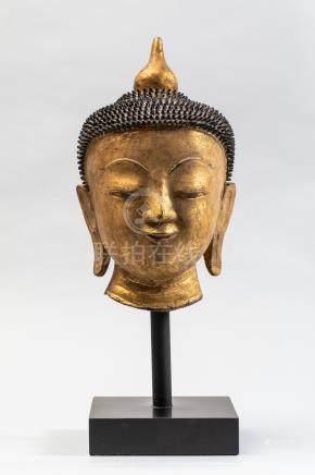 Tête de Buddha à l'expression sereine. Laque sec doré. Birmanie. Fin 19 ème [...]