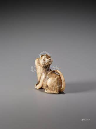 A HUMOROUS IVORY NETSUKE OF A SEATED TIGER WITH ITS TON…