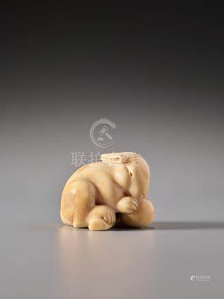 AN IVORY NETSUKE OF A RABBIT WITH LOQUAT BY IKKO