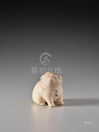 AN AMUSING IVORY NETSUKE OF A TUBBY PUPPY WITH BELL
