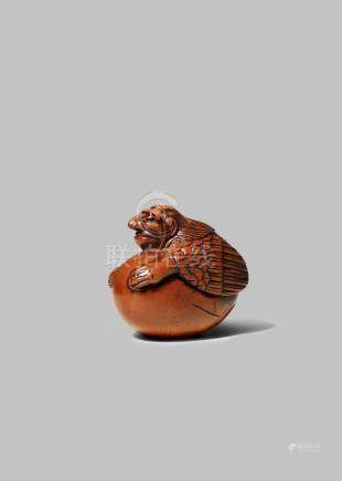 A JAPANESE WOOD NETSUKE EDO 1603-1868 Depicting a tengu hatching from its egg, tengu no tamago,