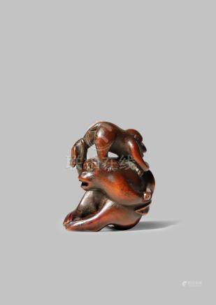 A JAPANESE WOOD NETSUKE MEIJI 1868-1912 Carved as two monkeys, the largest seated and holding the