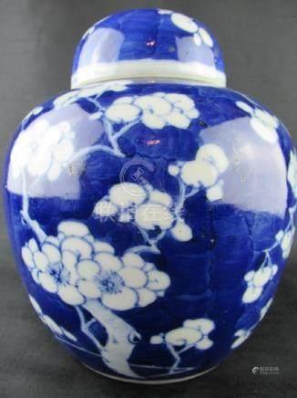 Chinese Blue and White Porcelain Bingmei Jar