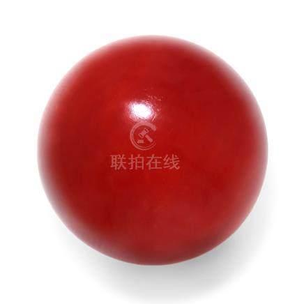 23.5 mm 紅珊瑚