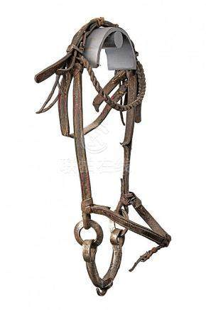 A snaffle bit with bridle