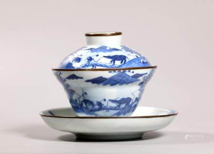 Chinese 18/19C Blue & White Porcelain Teacup