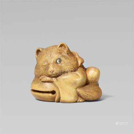 A boxwood netsuke of a tanuki with a temple gong by Alexander Derkachenko