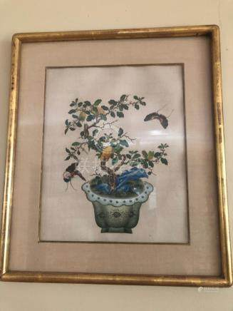 Chinese watercolor on paper framed bonsai object
