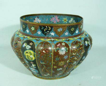 Large oval bowl. Very fine Cloisonné work.