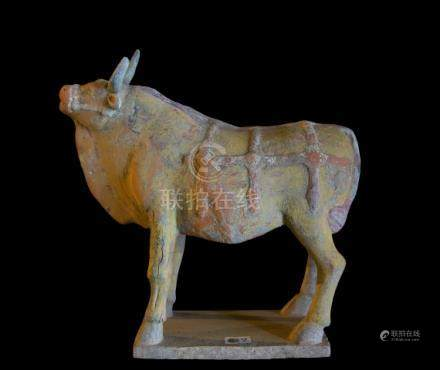 CHINE - Epoque  WEI (386-557 ap. JC)Statuette de buffle à l'arrêt en terre cuit
