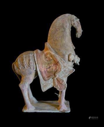 CHINE - Epoque  WEI (386-557 ap. JC)Statuette de cheval harnaché à l'arrêt en t