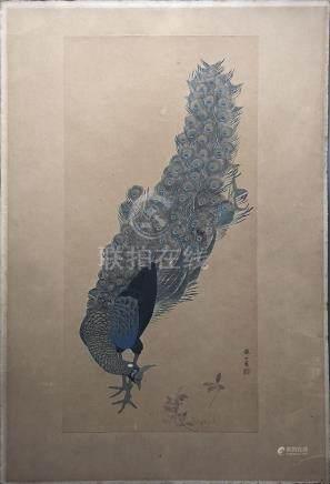 Mori TETSUZAN (1775-1841). Aquarelle sur papier représentant un paon. Japon, pé
