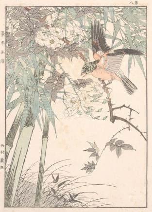 Imao Keinen, Vogel auf einem Rosenast mit Bambus. (8. Blatt