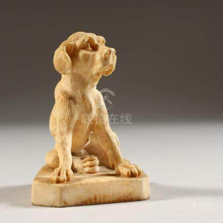 A GOOD EUROPEAN IVORY FIGURE OF A SEATED DOG. 2.25ins high.