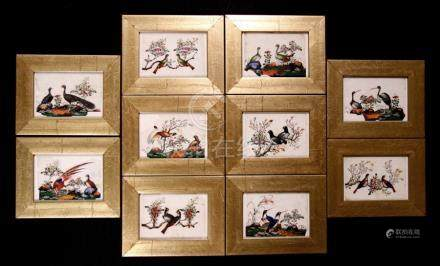 A group of ten 19th century Chinese paintings on rice paper depicting birds and foliage, framed &