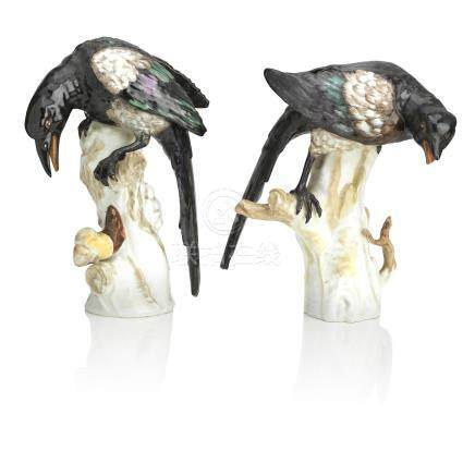 A pair of Berlin bird models of magpies Late 19th century