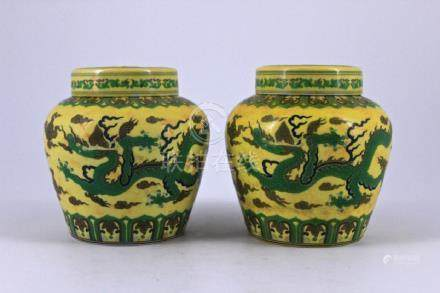 Pair of Ming DouCai Porcelain Jar with Lid