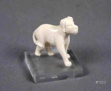 Figura de perro en marfil tallado, sobre peana de metacrilat