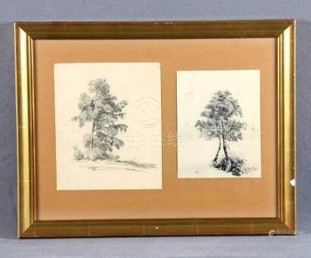 "ARAUJO, JOAQUÍN (1851-1894). ""Árboles"". Dos dibujos a lápiz"
