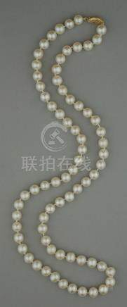 8.5MM CULTURED PEARL STRAND WITH 14K YELLOW GOLD CLASP