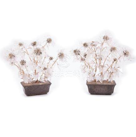 Pair of Quartz Chrysanthemum Plants Potted in Brass Pot