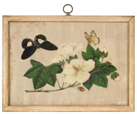 ENGLISH SCHOOL, 19TH C A ROSE BOUQUET watercolour, 20 x 17.5, rosewood frame, a 19th c Chinese