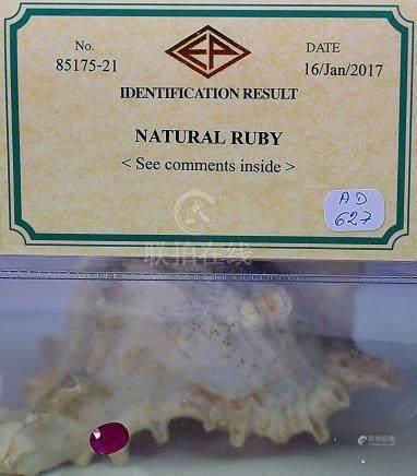 Sous certificat un rubis ovale NATUREL de belle couleur probablement Birman d'u